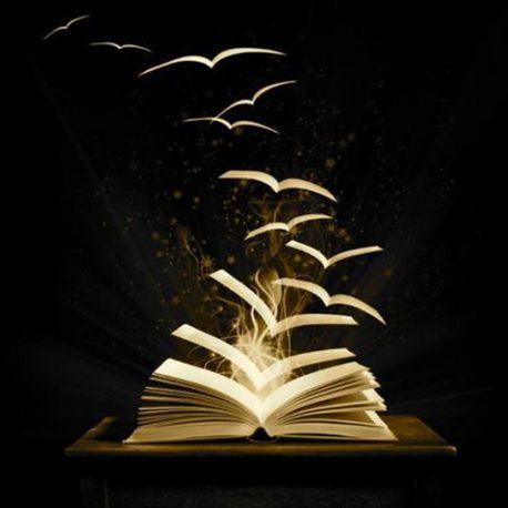 51 – Nuove collane di poesia. A27 e Nervi