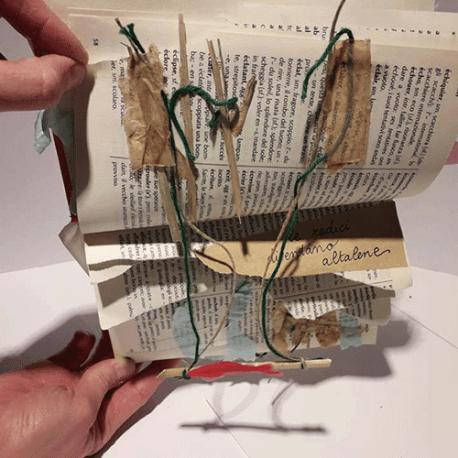 50 – Libri Ri-fioriti